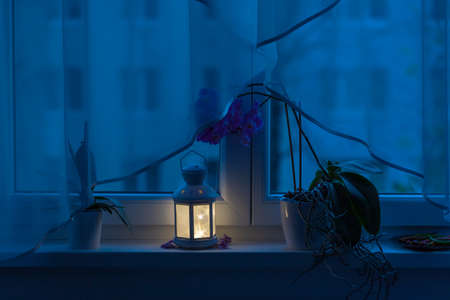 Still life on the window sill. Lamp and flower above which is a curtain.