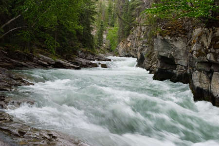 the rapids: The river rapids in Jasper maligne canyon
