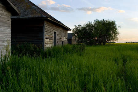 Some old buildings near a farm field Stock Photo - 6097730