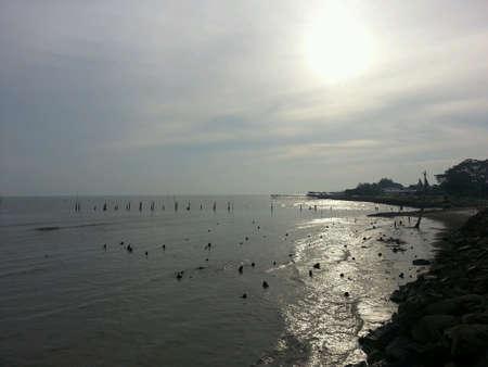 groyne: Beach landscape with groyne