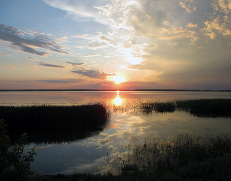 Sunset on the lake in summer. Calm water. Reed. The sky with clouds. The reflection of the sun in the water. Stock Photo