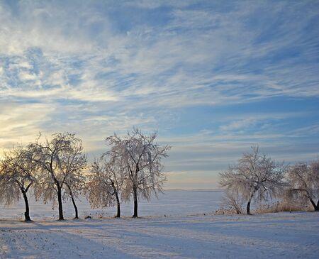 Winter landscape Reklamní fotografie