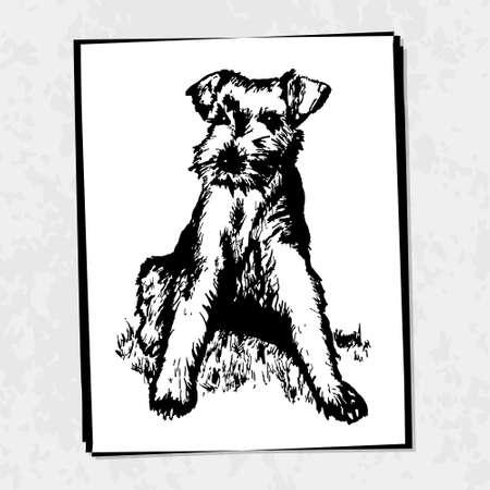 Dog in sketch style  Dog hair salon  Vector