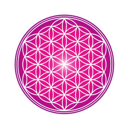Flower of Life design image, vector illustration. Sacred geometry, symbol of healing and balance. Vektorgrafik