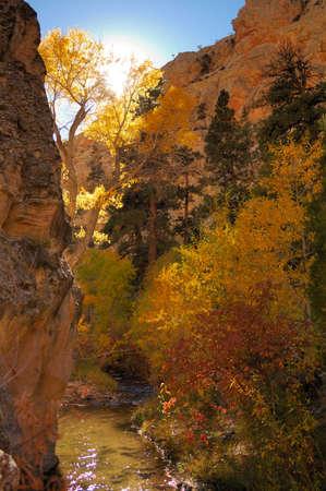 Fall Colors in Death Box Canyon, Utah Stock Photo - 2135507