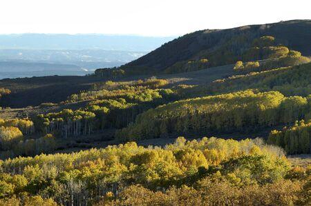 escalante: Fall Colors on Boulder Mountain, Utah Stock Photo
