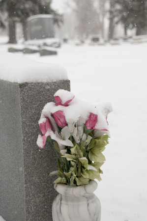 Snow covered flowers at burial site