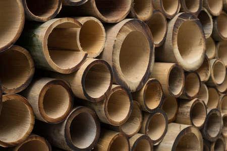 chinese bamboo: bamboo Stock Photo