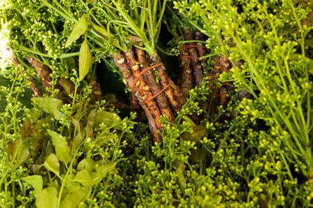quinine: neem