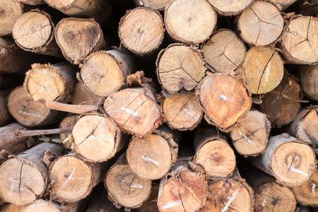 timber: timber