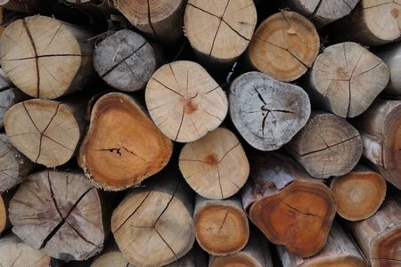 firewood background: Firewood background