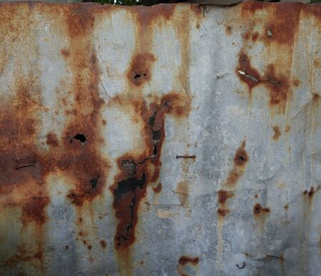 rusted: Rusted corrugated zinc sheet