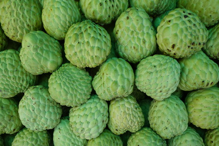 nutriments: Stack of custard apple fruits