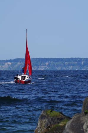 puget sound: Sailboat with red sails tacking off Edmonds Marina on Puget Sound