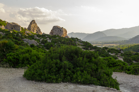 Rock formations and Mediterranean flora near Cala Bóquer and Pollenca in Mallorca island, Spain during sunny, warm day 免版税图像