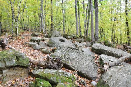 Scattered dolmen slabs. Dolmen group Zhane II. Krasnodar region, Russia
