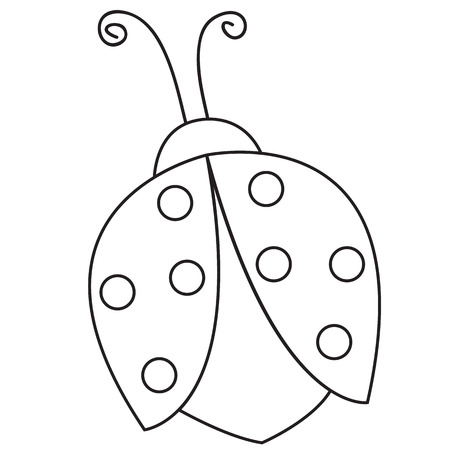 ladybird: Outlined illustration of a ladybug