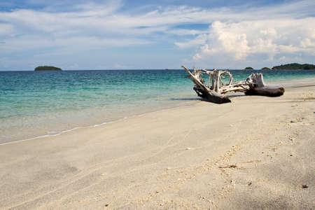Timber on the beach  Andaman sea
