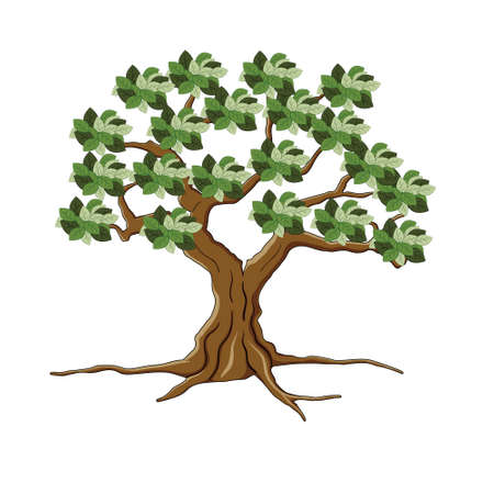Tree and root isolated on white background Illustration
