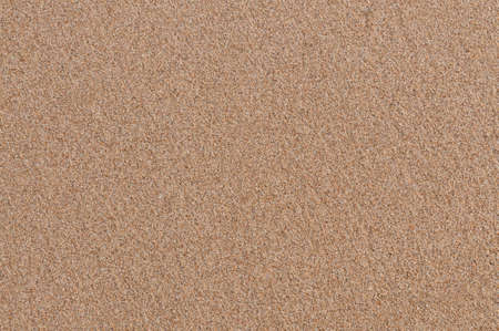 Texture of sand can used for background