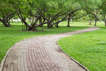 Shady pathway in the park
