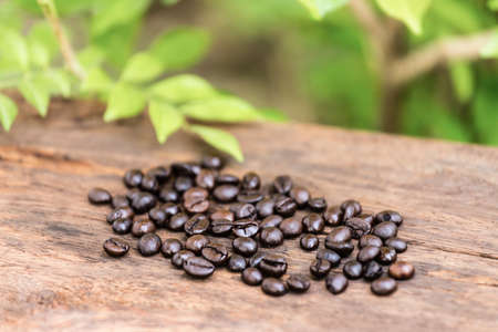 Deep of field coffee bean on wood floors against green leaf background