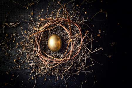 어두운 빈티지 나무 배경에 둥지에 황금 달걀 스톡 콘텐츠