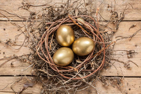 Golden eggs in the nest over wooden background with copy text   photo