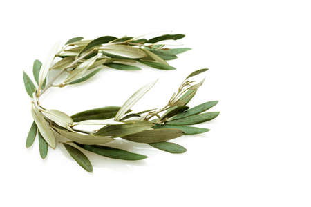 The olive wreath also known as kotinos was the prize for the winner at the ancient sports competition Games