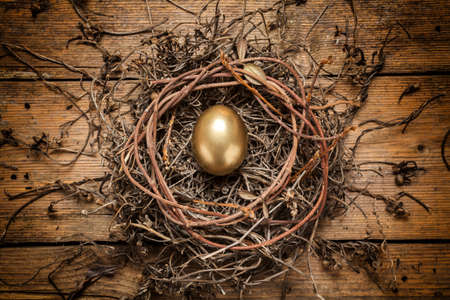 Golden egg in the nest over wooden background with copy text