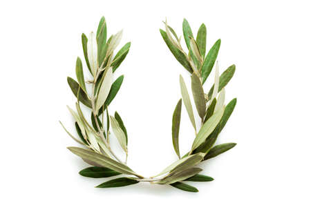 ancient olympic games: The olive wreath also known as kotinos was the prize for the winner at the ancient Olympic Games Stock Photo