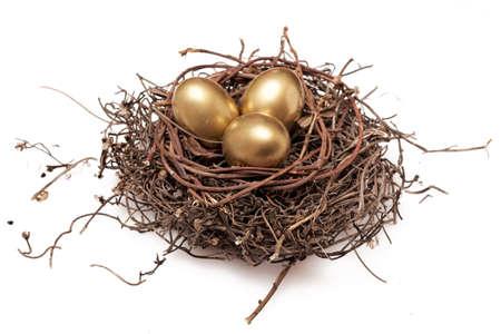 nido de pajaros: Tres huevos de oro en el nido aislado sobre fondo blanco