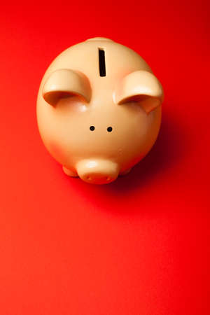 thrift box: Ceramic Piggy Bank Savings on Red Background