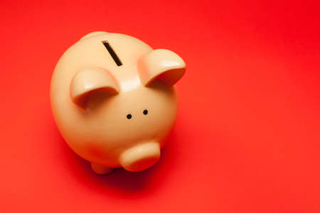 Ceramic Piggy Bank Savings on Red Background