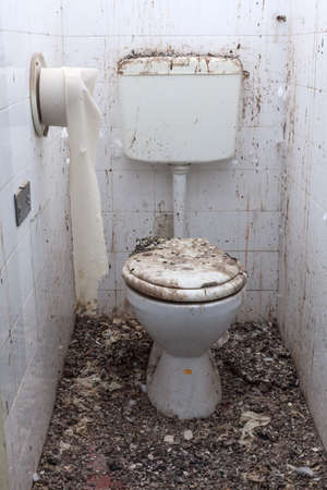 a toilet seat: Toilet in an abandoned, devastated house