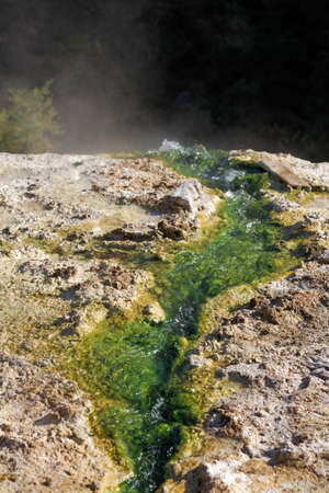 hydrothermal: Thermal springs in the village Thermes of Rodopi, Greece
