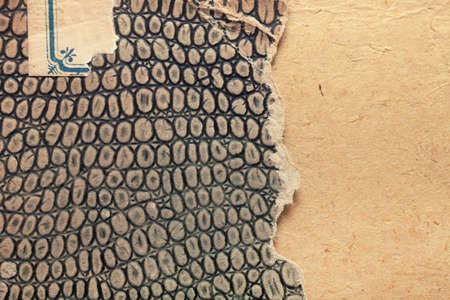 imitation leather: Vecchia copertina di libro, texture vintage in ecopelle