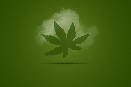 A green maple leaf on a green background with dust
