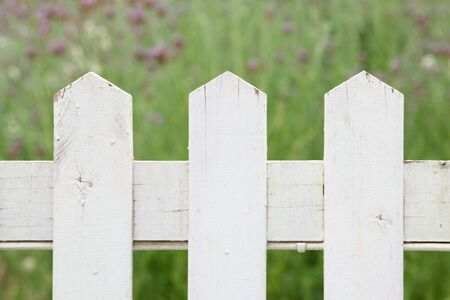 Section of a white picket fence with green garden in the background photo