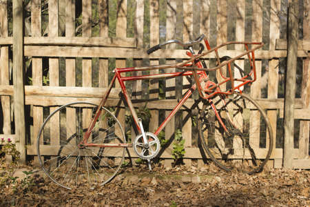 parked bicycles: Old distressed red vintage bicycle with no saddle and a rusted frame standing against a slatted wooden fence in sunshine