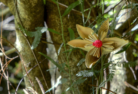 recycle tree: Paper flower in a tree symbolizing the cycle of paper