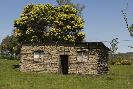 Rural African house with green grass leading up to it and a tree in the background Stock Photo