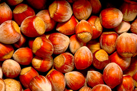 Macro shots, Beautiful HAZELNUT - Stock Image