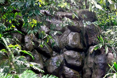 Mini Waterfall at Malaysia