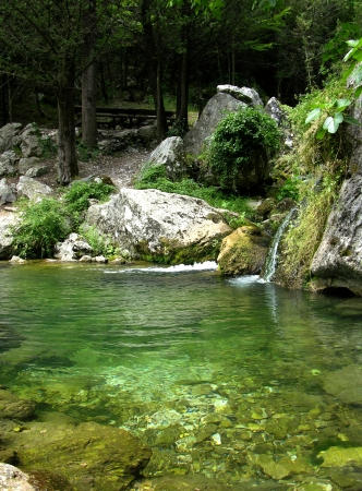 natura: Natura Stock Photo