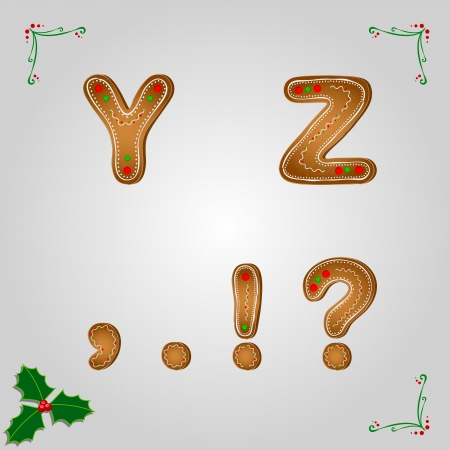 Christmas gingerbread letters y z and punctuation marks Vector