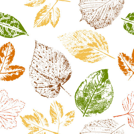 Seamless pattern of autumn leaf stamps on white background  Vector