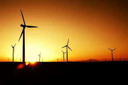wind farm: Puesta de sol de granja de viento  Foto de archivo