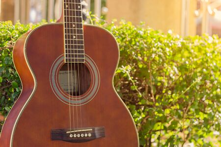 Guitar leaning on a bush with sunlight in summer day Archivio Fotografico