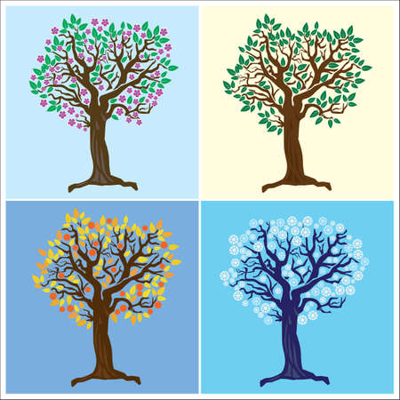tree representing the four seasons  Vector